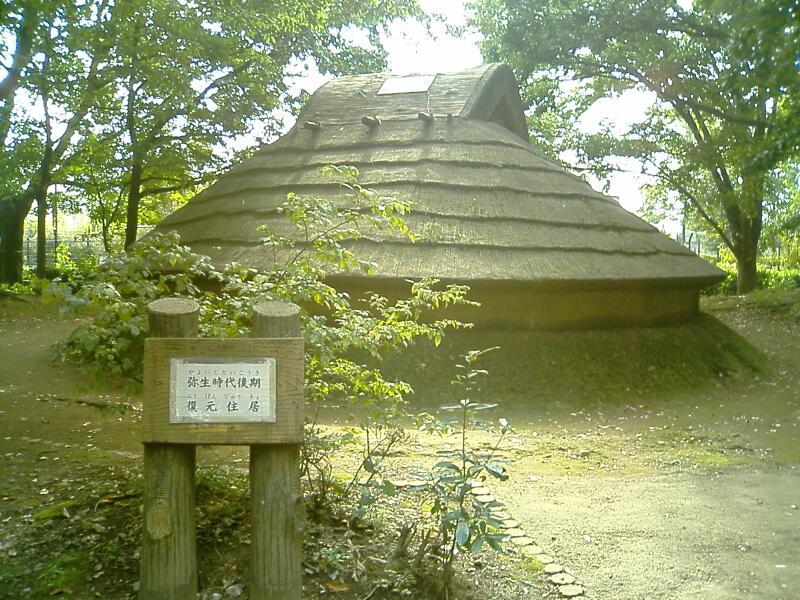 平和 の 森 公園