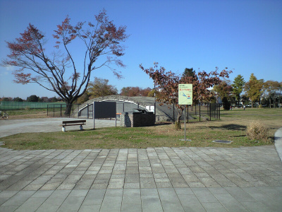 20081123011