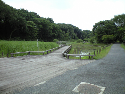 2009052702a