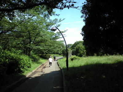 20090620007