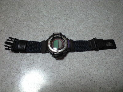 20100127001