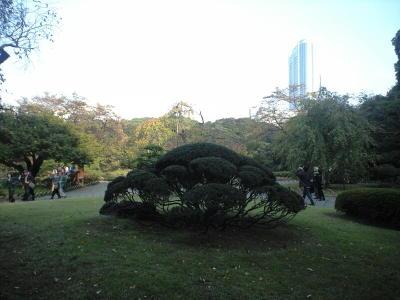 20091031011