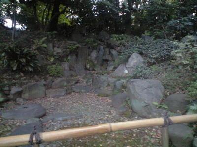20091031075