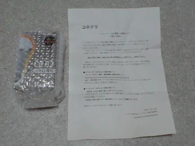 20100325002