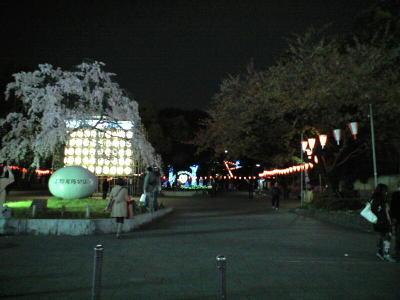 20100328001