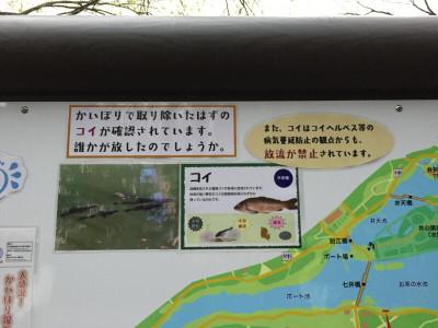 20170401004_2